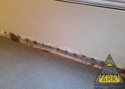 Tanking and interior damp proofing.