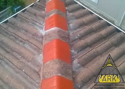 Tiled Roof Repairs/Box Gutter Extension/Ridge Regouting/Liquid Rubber Coating.